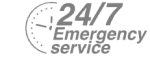 24/7 Emergency Service Pest Control in Coulsdon, Old Coulsdon, Chipstead, CR5. Call Now! 020 8166 9746